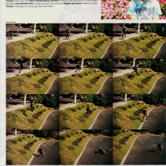Skateboarder Mag   Marisa Dal Santo Who's Hot